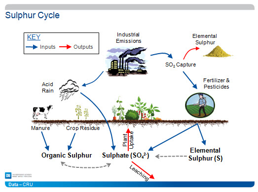 Sulphur-Cycle